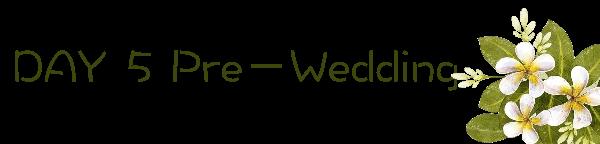 Day 5 Pre Wedding