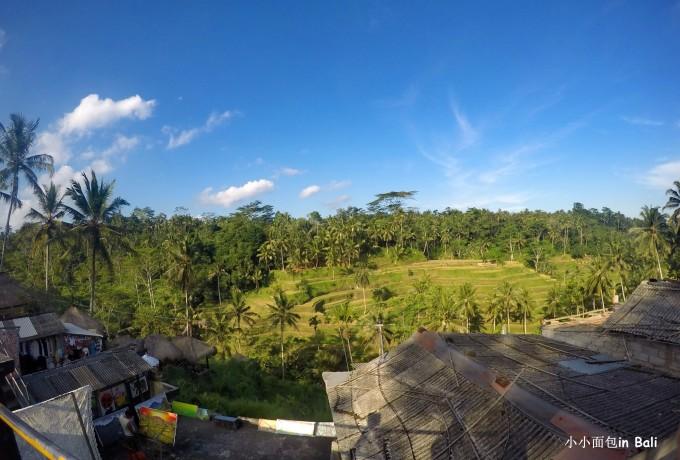 梯田--是巴厘岛著名的梯田风光,主要集中在德格拉朗一带,位于乌布以北
