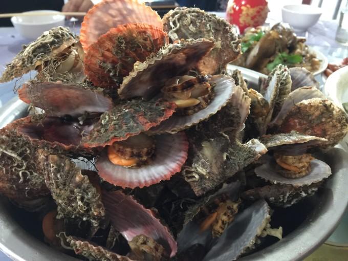 大连广鹿岛悠闲两日游,看海吃海鲜,哟西!