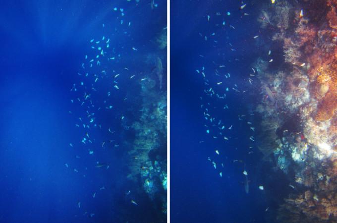 海底的悬崖 光,似乎从大海最深处的某个点放射状地照射上来,让蔚蓝