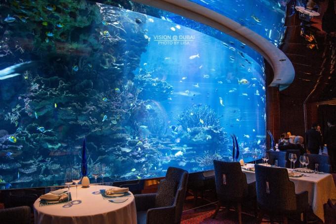 海底餐厅其实是一个噱头